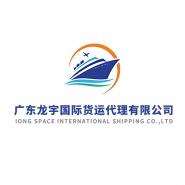 广东龙宇国际货运代理有限公司